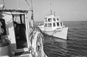 Plate 38 - Haul Boat Approaching, 2006