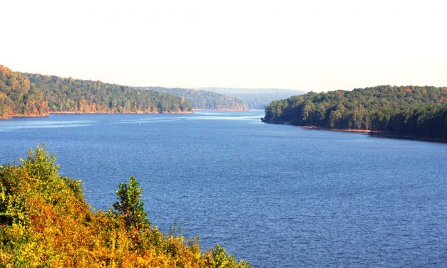 "October 11, Help ""Clean Jordan Lake"""