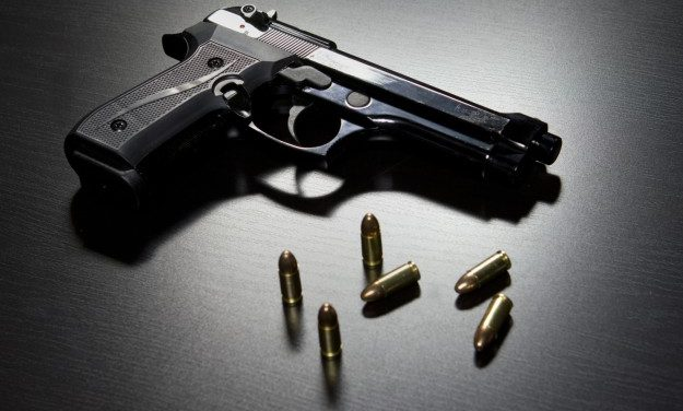 County Commissioners Reject Gun Regulation