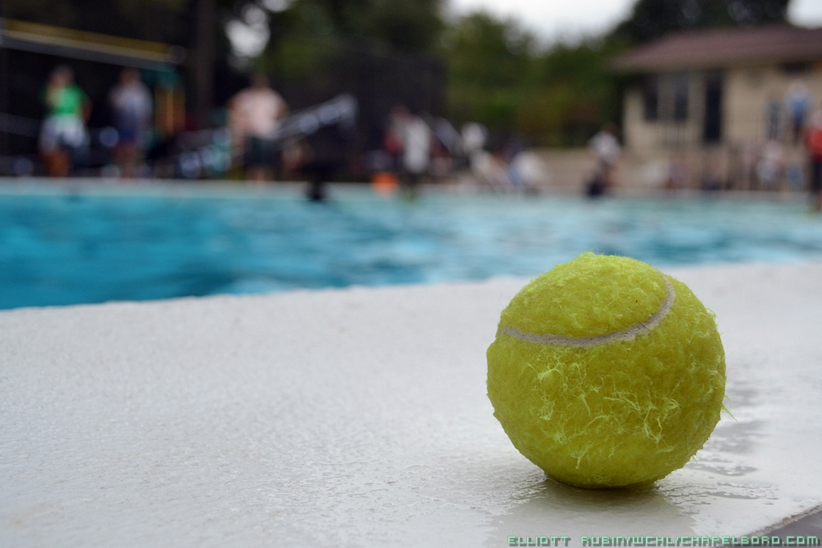 All Paws in the Pool for the 14th Annual Orange County Dog Swim
