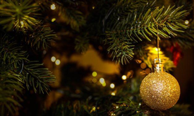DG Martin: A Scraggly Christmas Tree