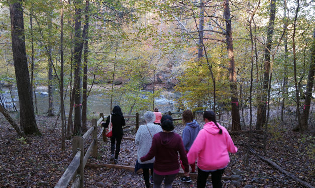 This is Tourism: Taking a Walk With Michelle Rogers