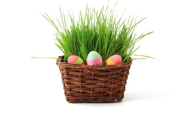 Downtown Chapel Hill Hosting 'Plastic-Free Eggstravaganza'