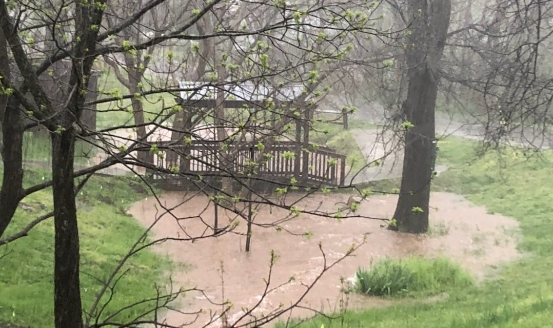Heavy Rain Closes Hillsborough Park; OWASA Responds to Wastewater Spill