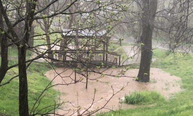 Heavy Rain Closes Hillsborough Park; OWASA Responds to Wastewater Spill