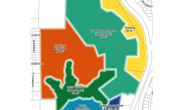 Viewpoints: Regarding the Greene Tract Forest
