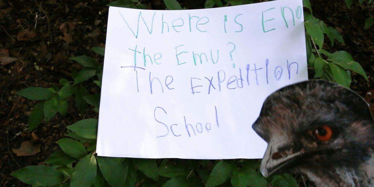 Orange County Embraces 'Eno the Emu' Craze
