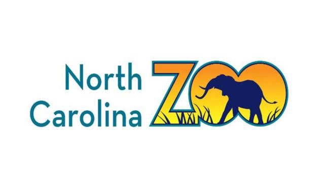 Suspect Killed by Deputies at North Carolina Zoo After Chase