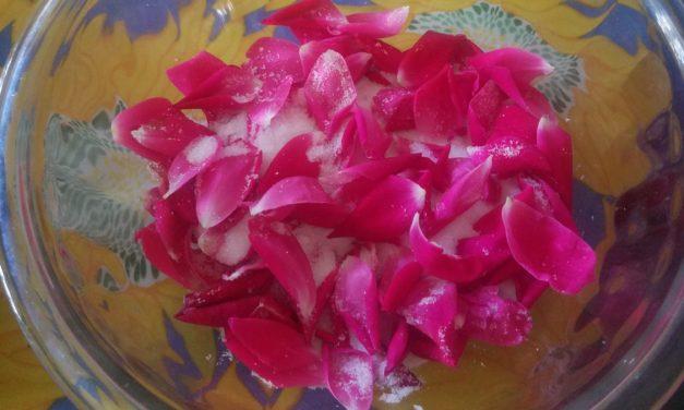 Just the Bill, Please: Second Summer & Rose Petals
