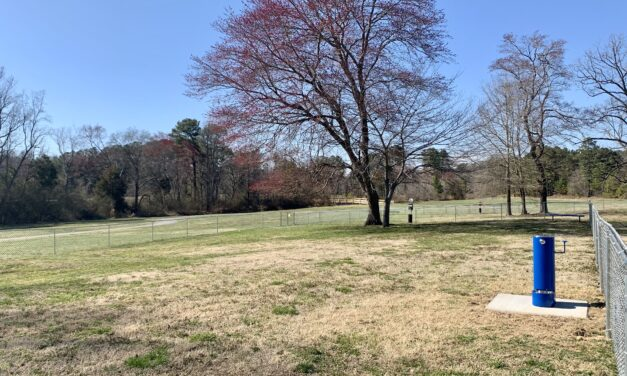 Chatham County Set to Open Permanent Dog Park