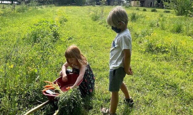 Playing In The Dirt: Grow! Kids Learn While They Have Fun With Gardening