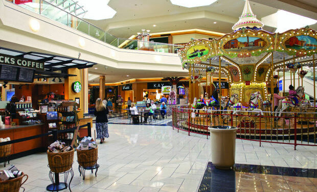 Lawsuit: Blind Man, Guide Dog Forced From N. Carolina Mall